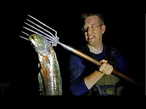 Spearfishing BIG Snakehead & Forging Fishing Spear -  Catch Clean & Cook Snakehead