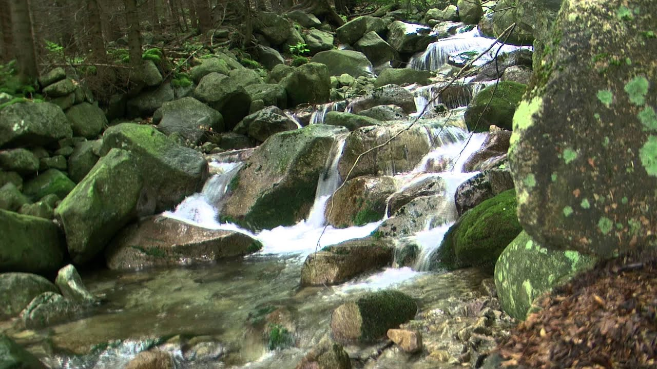 HD Video Of Flowing Water. Live Wallpaper. Waterfall