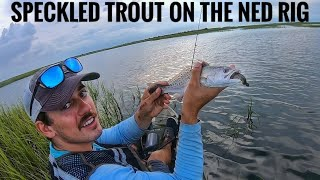 Catching Tons of Speckled Trout on a Weedless Saltwater Ned Rig