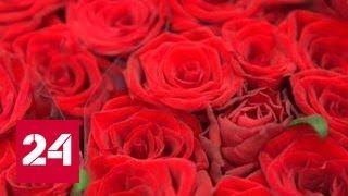 Миллион алых роз Специальный репортаж Юлии Макаровой