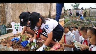 Children of bear bile farmers plant garden of herbal alternatives to bile