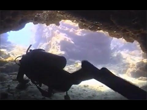 KeysDiveGuide Vol.4-Lower Key Largo / French Reef Caves / Molasses Reef / Bronze Pin Wreck
