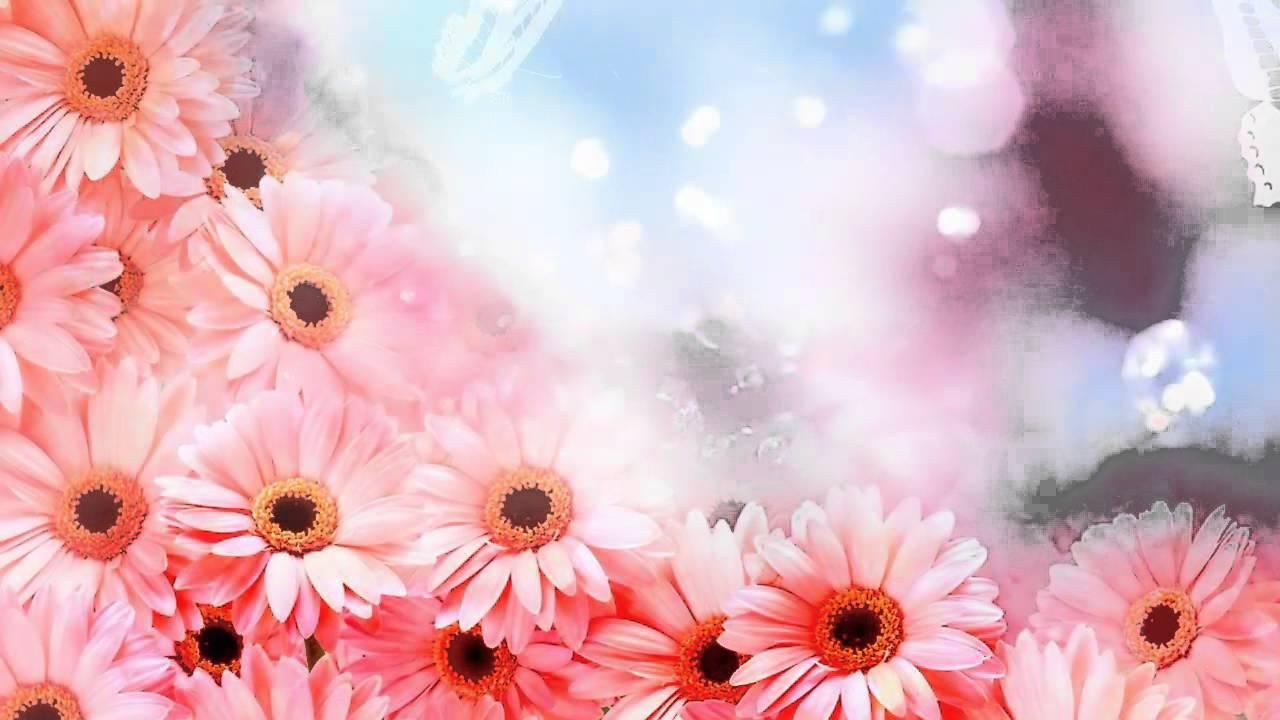 Фон розовые цветы
