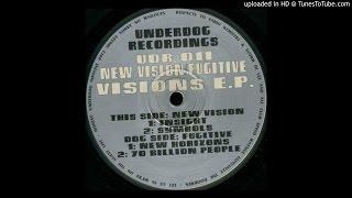 New Vision - Insight