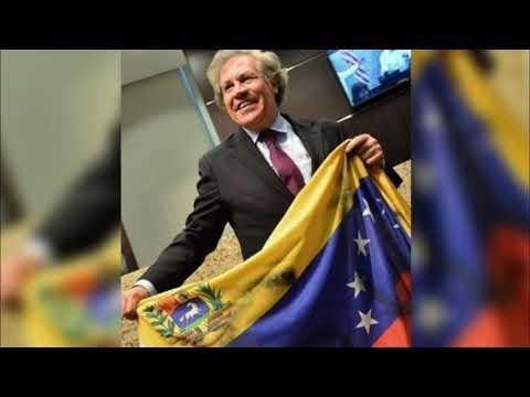 Carlos A. Montaner - Es muy posible la intervención internacional humanitaria en Venezuela