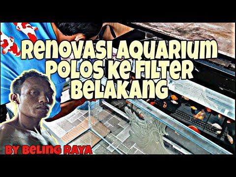 RENOVASI AQUARIUM POLOS JADI FILTER BELAKANG #aquarium