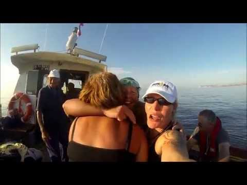 The Best English Channel Relay Swim 2014 - Team Mid Life Crisis