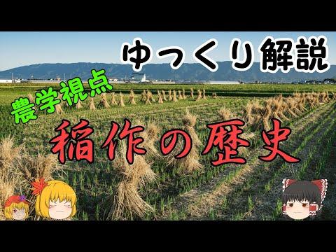 【ゆっくり解説】農学の世界・お米①~稲作の歴史~