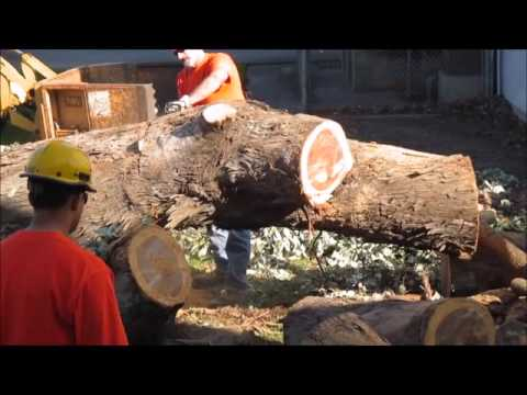 Wind Storm Damage at SLHRS Depot  12 30 2014 Tree Removal 1 6 2015