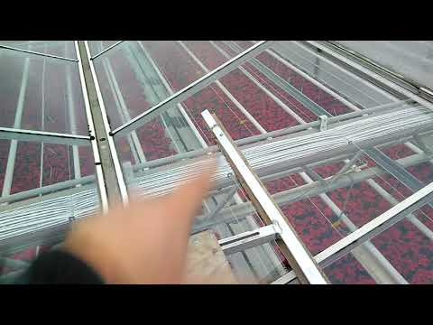 Обслуживаю теплицы на крыше