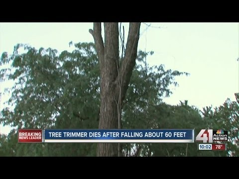 Tree trimmer falls to death in Gardner, Kan  - YouTube