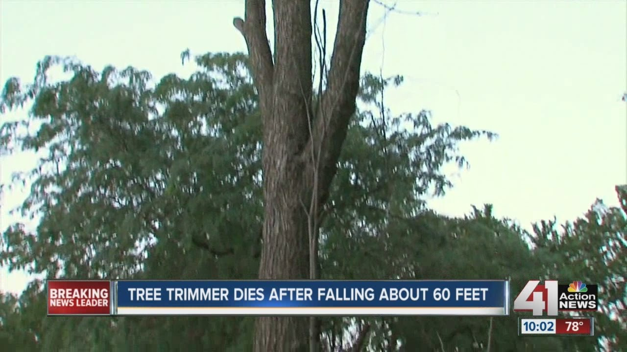 Tree trimmer falls to death in Gardner, Kan