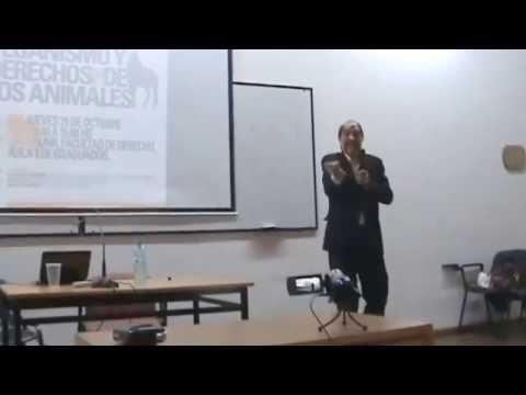 cómo-actuar-y-denunciar-ante-maltrato-animal-.-dr.-esteban-franichevich