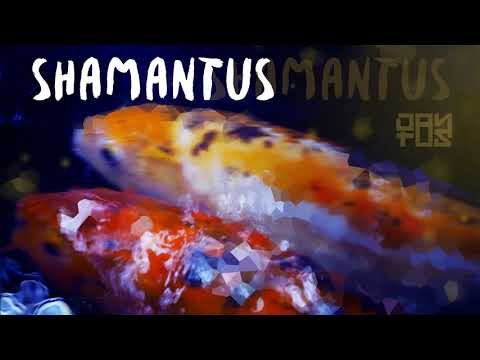 Dantus ♪ Shamantus [o_Official Audio]