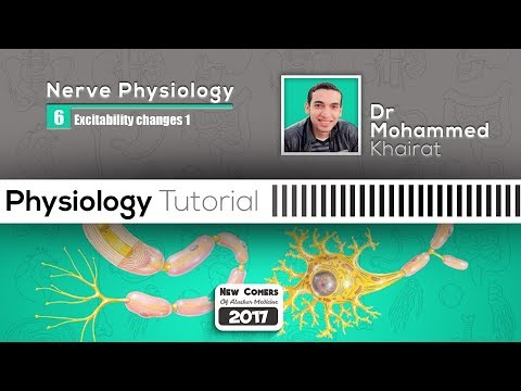 Physiology of nerve (7)| Excitability changes part 1