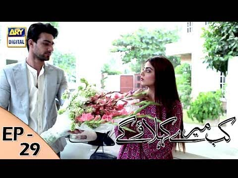 Kab Mere Kehlaoge - Episode 29 - 13th February 2018 - ARY Digital Drama