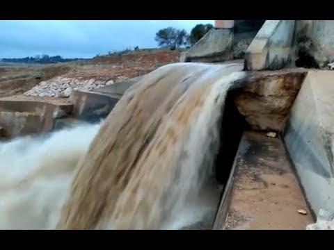 Así circula el agua de la cabecera del Tajo por el trasvase a su paso por Belmontejo (Cuenca)