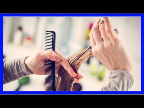Schnipp Schnapp Haare Trocken Oder Nass Schneiden Das Ist Hier