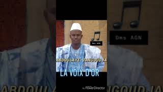 "vuclip Abdoulaye Tangoudja ""Boubou Diafara"""