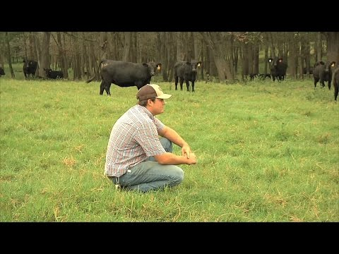 Millennial Farmer Runs Diverse Cattle Operation In Emanuel County, Georgia