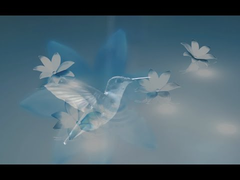 A Healing Prayer for Grief   -  I am becoming... the humming bird.  By Lex Lang