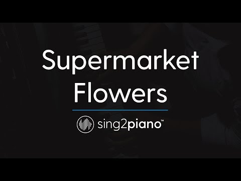 Supermarket Flowers [Piano Karaoke Instrumental] Ed Sheeran