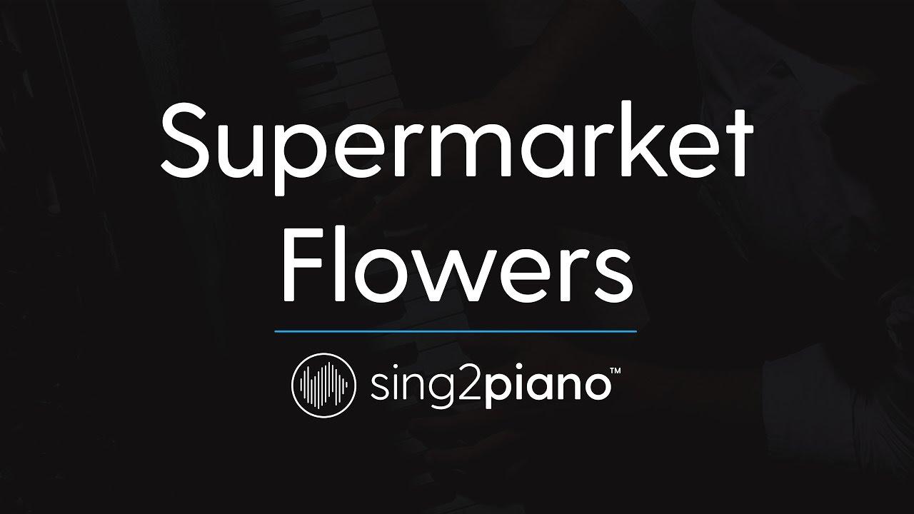 Supermarket Flowers [Piano Karaoke Instrumental] Ed Sheeran