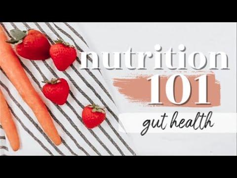 GUT HEALTH: THE BASICS | Nutrition 101 Ep. 7