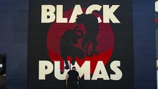 Black Pumas《Black Pumas》