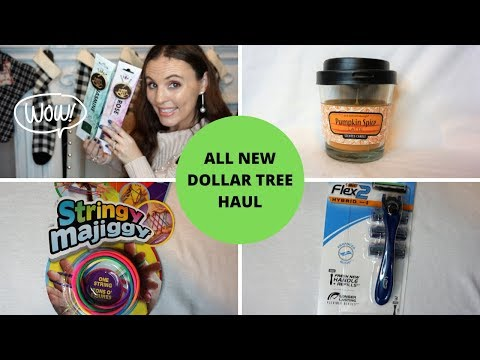 DOLLAR TREE HAUL | NEW ITEMS FOUND