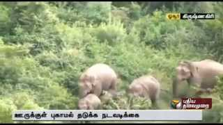 Chasing away wild elephants in Sanamavu halted due to heavy rain