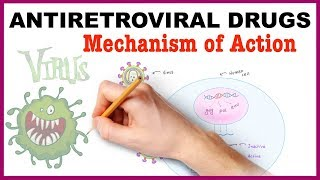 Antiretroviral Drugs Pharmacology / Mechanism of Action