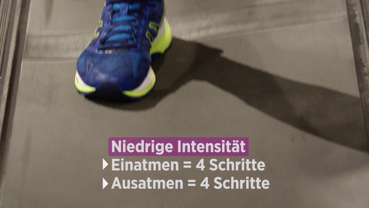 Welcher Laufschuh passt zu mir? SportXX Online Berater