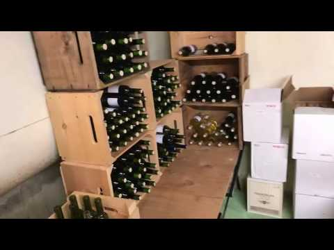 King Street Vineyard Self Guided Tour