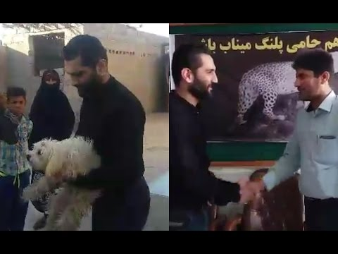 Update on Animal Cruelty in Minab City, Hormozgan Province, Iran