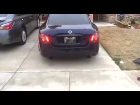 Vip dancing 7th gen Maxima tail lights by Greg St Hilaire