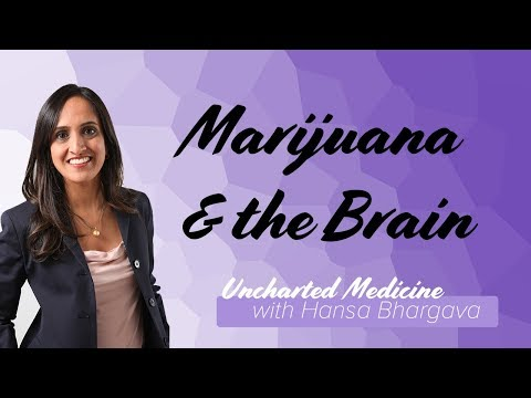 Marijuana and the Developing Brain: Current State of Evidence | Uncharted Medicine
