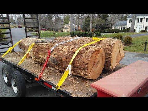 loading heavy oak logs