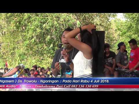 Kandas Laras Melonia New King Star Gembong Community