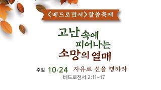 2021년 10월 24일 4부 주일예배 (청년부예배/전교인 베드로전서 말씀 축제)