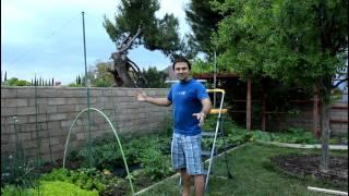 How To Build Tomato String Trellis Vertical Gardening With California Gardener