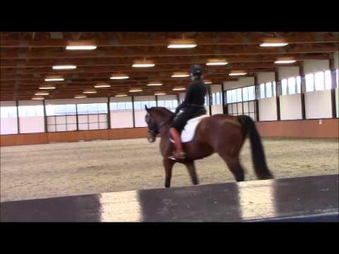 Pete day 1 Nick Onoda clinic jan 30 2016 part 2