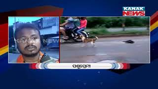 Special Report: Mother Dog Watched Her Dead Puppy After Accident | Kanak News