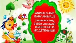 Английский для Детей и начинающих Животные и их Детёныши Домашние и дикие Животные Звуки Животных