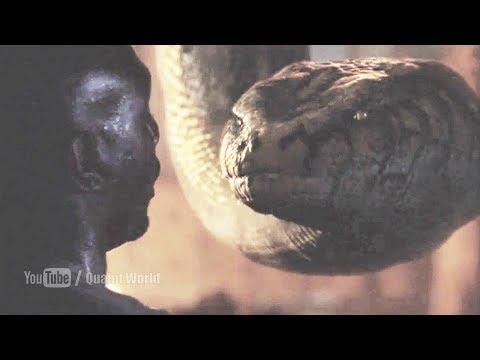 Anaconda killed Morris Chestnut | Anacondas (2004) Movie Scene | Anaconda Swallowed thumbnail