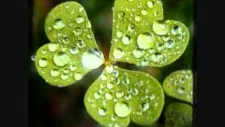 have you ever seen the rain.wmv