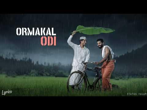 ORMAKAL ODI KALIKKUVAN Malayalam Lyrical Whatsapp Status|Typography Video