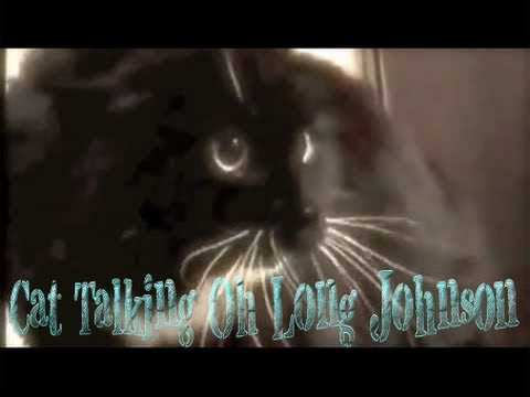 Talking Cat New HD | Cat Talking Oh Long Johnson Subtitles HD