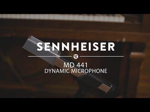 Sennheiser MD 441 Dynamic Microphone   Reverb Demo Video