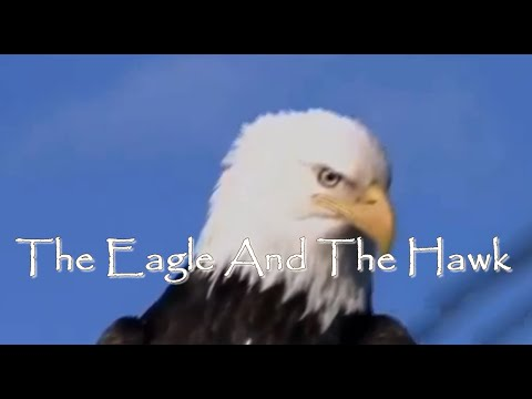 The Eagle and the Hawk By John Denver With Lyrics
